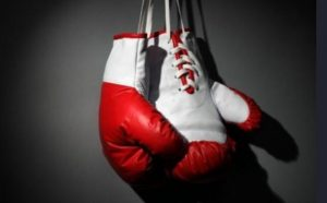 cheap boxing gloves for heavy bag