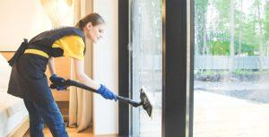 handheld steam vacuum cleaner
